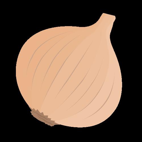 玉ねぎのアイコン・イラスト