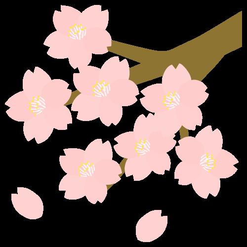 桜の無料アイコン・イラスト素材