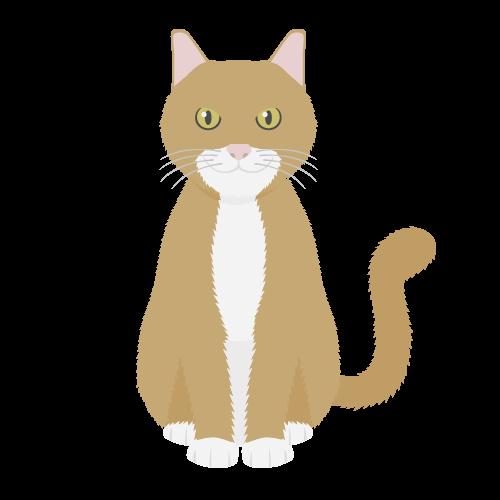 猫(茶白猫)の無料アイコン・イラスト素材
