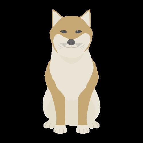 犬(茶柴)の無料アイコン・イラスト素材