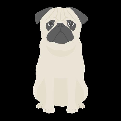 犬(パグ)の無料アイコン・イラスト素材