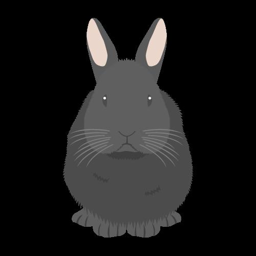 ウサギ(黒)の無料アイコン・イラスト素材