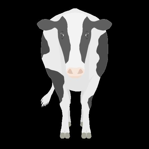 牛の無料アイコン・イラスト素材