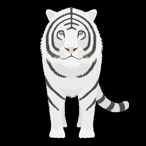 ホワイトタイガーの無料アイコン・イラスト素材