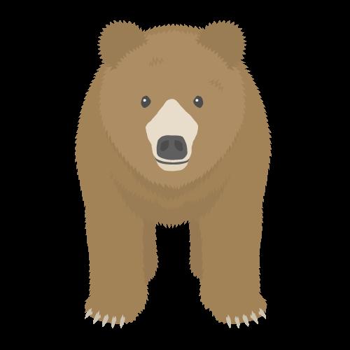 クマの無料アイコン・イラスト素材