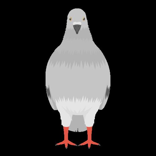 ハト(鳩)の無料アイコン・イラスト素材