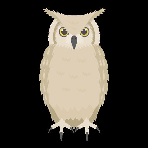 フクロウの無料アイコン・イラスト素材