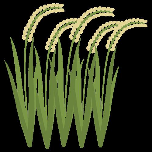 稲の無料アイコン・イラスト素材