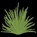 雑草の無料アイコン・イラスト素材